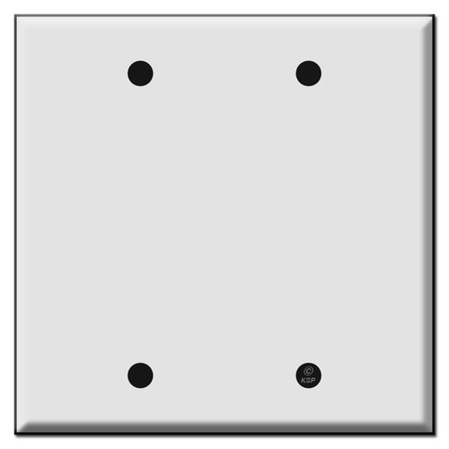 2 Blank Wall Switch Plate Covers
