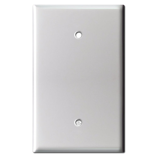 Oversized 1 Blank Electrical Wall Plate Cover - Brushed Aluminum