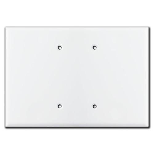 Extra wide 2 blank switch plates in white.