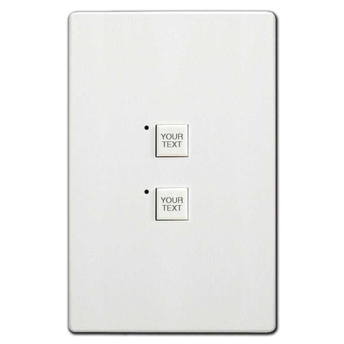 Engraved Touch Plate Low Voltage 2 LED Switch Controls Mystique