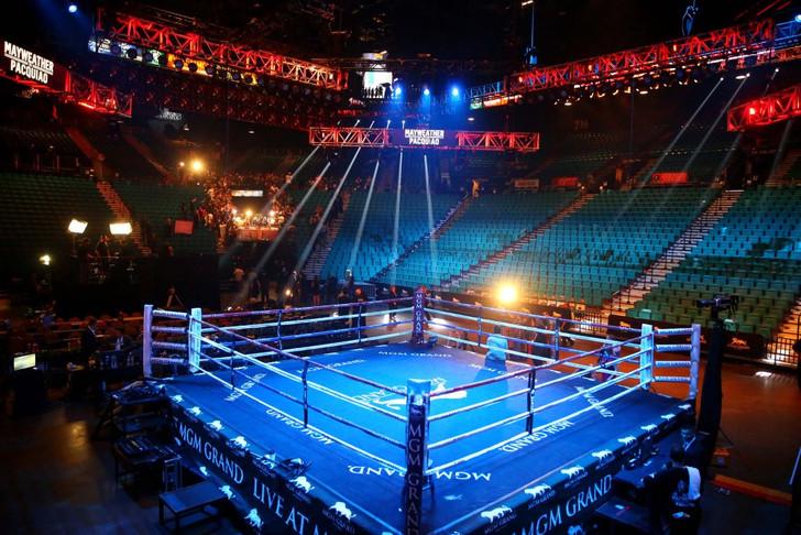 Pro Fight Ring