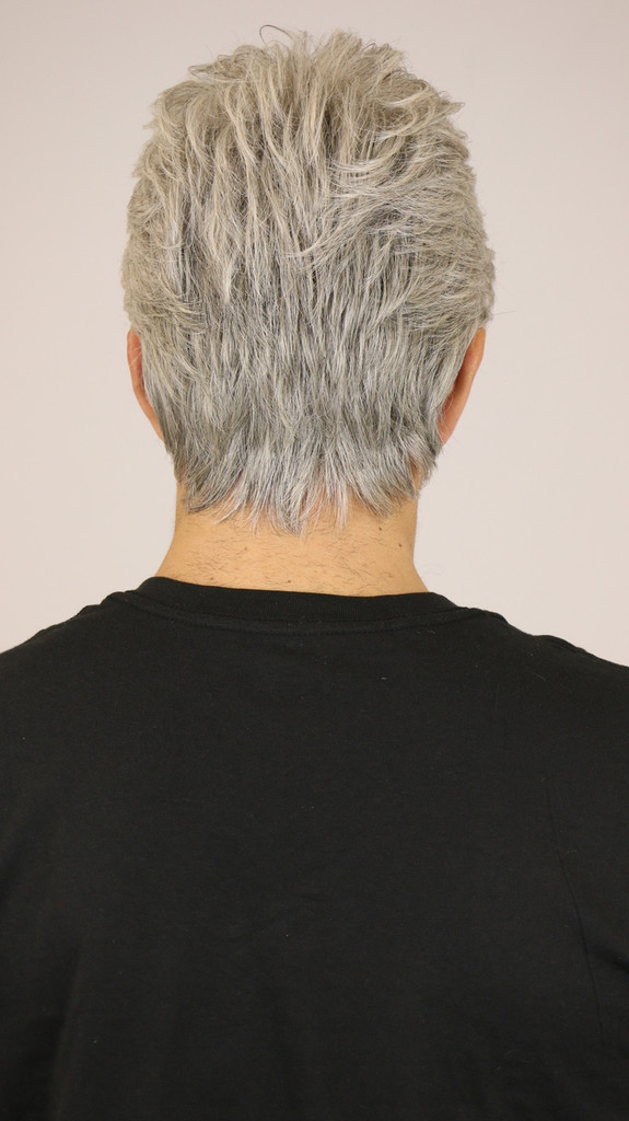 Light Grey / Dylan / Men's Wig