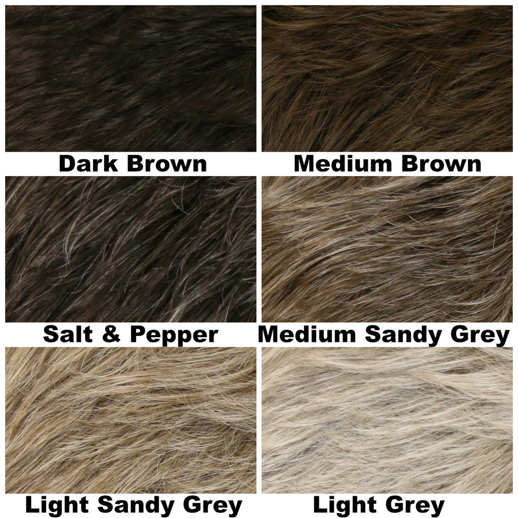 Color Chart / Dylan / Men's Wig