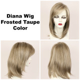 Frosted Taupe / Diana Lace Front / Long Wig