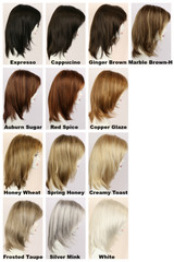 Color Chart / Diana Lace Front / Long Wig