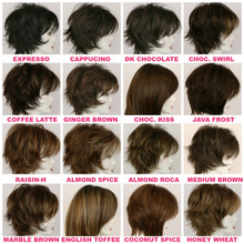 Color Swatches / Brown Wig