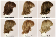 Color Chart / Harmony w/ Roots / Medium Wig