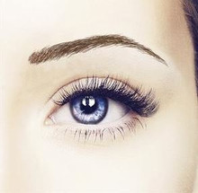 Beauty Eyebrow #1- Light Brown