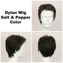 Salt & Pepper / Dylan / Men's Wig