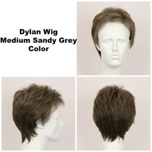 Medium Sandy Grey / Dylan / Men's Wig