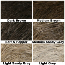 Color Chart / Chad / Men's Wig
