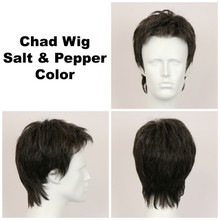 Salt and Pepper / Chad / Men's Wig