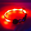 "Glow in the Dark LED Dog Collar, 13"" - 20"" length, 1"" width, Red"