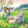 Cuddle Time - 3x49pc Multipack Jigsaw Puzzle By Ravensburger