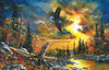 Sky Watcher - 1000pc Jigsaw Puzzle By Sunsout