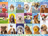 It's a Ruff Life - 1500pc Jigsaw Puzzle by Buffalo Games