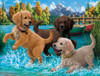 Puppies Make a Splash - 500pc Jigsaw Puzzle By Sunsout