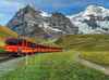 Swiss Mountain Train - 1000pc Jigsaw Puzzle By Serious Puzzles