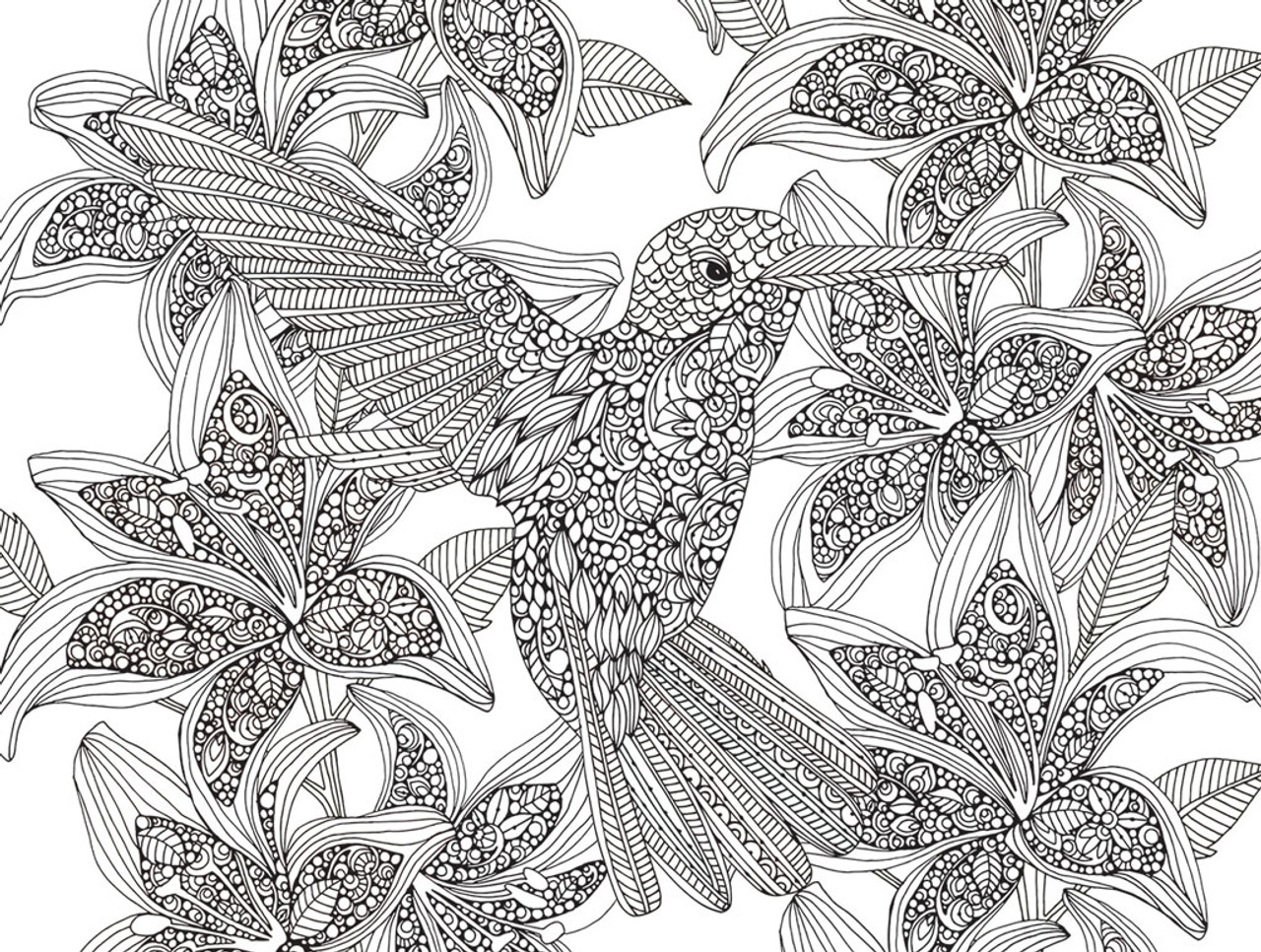 Hummingbirds-2 Sided Coloring Puzzle - 300pc Jigsaw Puzzle By White  Mountain (discon-22796)