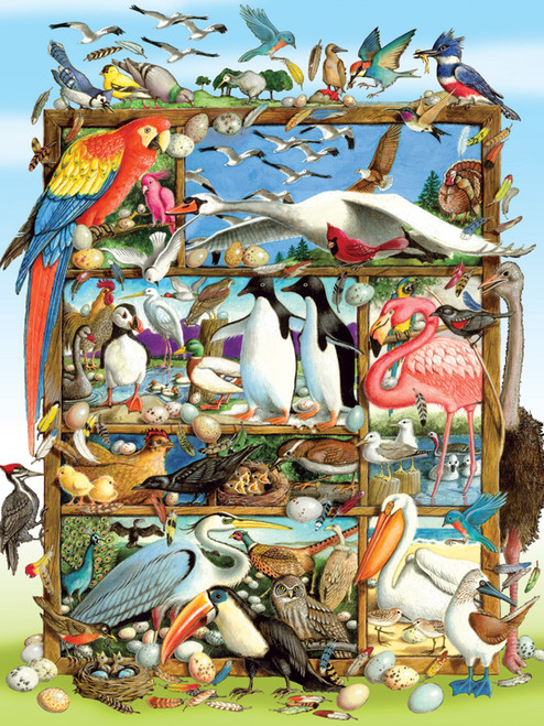 Birds of the World - 350pc Family Jigsaw Puzzle by Cobble Hill