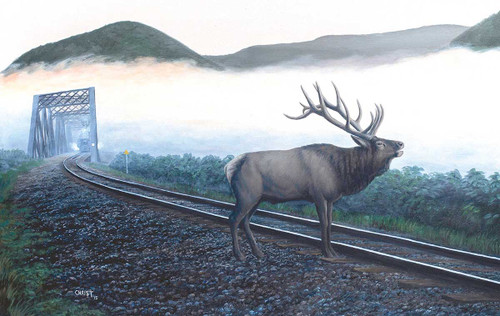 Elk Tracks - 550pc Jigsaw Puzzle By Sunsout