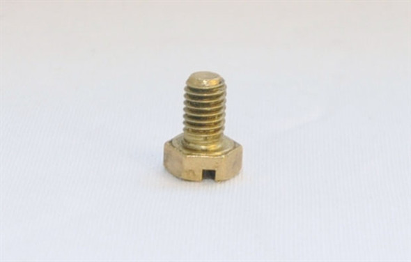 Johnson Cover Plate Screw