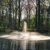 Linden pond fountain pattern