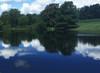 Midnight Blue Dyed Pond