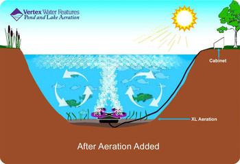 Pond aerator provides top to bottom pond circulation