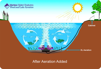 Pond Aeration Schematic