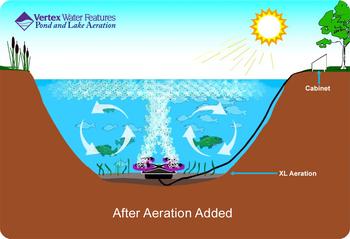 Pond Aeration Schematic