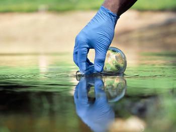 Pond Water Testing