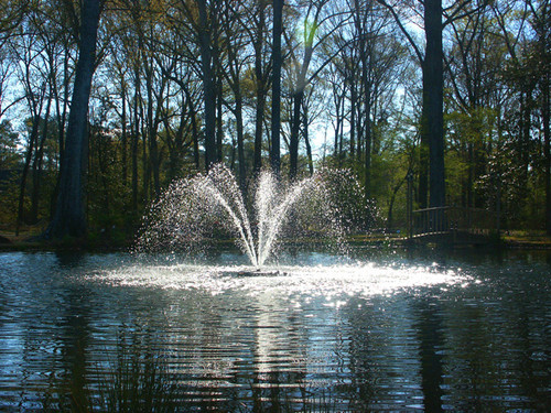 Cypress Pattern J Series Fountain