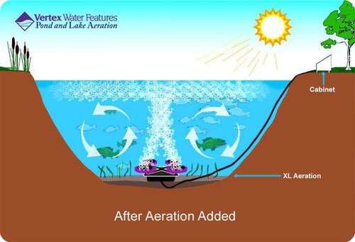 Pond aerator provides top to bottom pond circulation