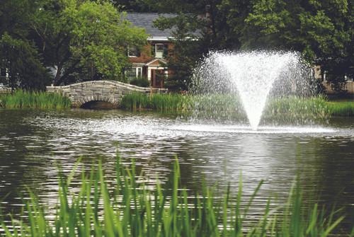 2HP Pond Fountain - Gemini Spray Pattern