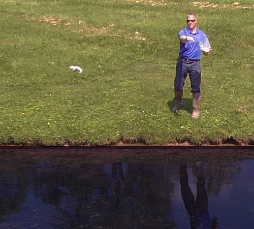 Easy pond treatment application - simply toss water soluble packets into pond and let them get to work!