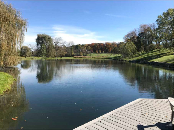 How to clean a pond without draining it- Accelerated Pond Treatment Package