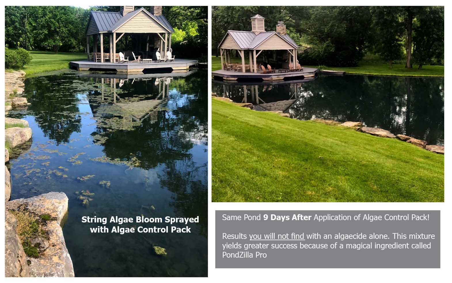before-after-pondzilla-web.jpg