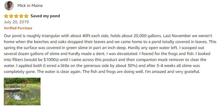 Pond Clarifier Review