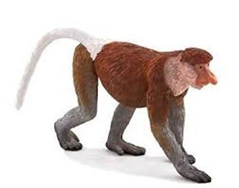 Proboscis Monkey Toy Figure