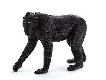 Black Crested Macaque Monkey Toy Figure