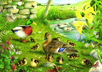 House of Puzzles Ducks to Water 500 Big Piece Jigsaw