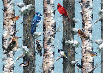 Christmas Birds 1000 piece jigsaw Piatnik