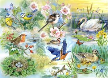Big 250 Piece Jigsaw Puzzle Feathered Friends - Wild Birds & Ducks