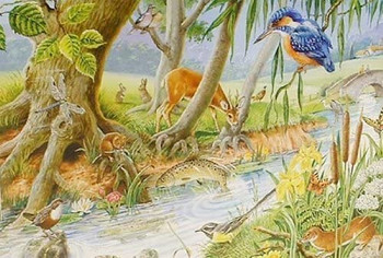Big 250 Piece Jigsaw Puzzle By The Riverbank - Wildlife At River