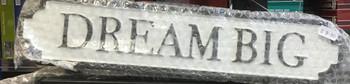Dream big tin sign