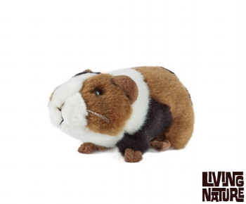 Living nature guinea pig