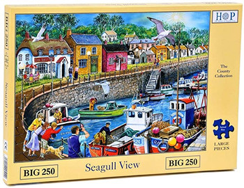 House of puzzles 250 big seagull view