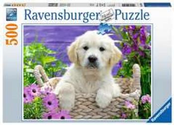 Ravensburger 500 piece jigsaw dogs golden retriever
