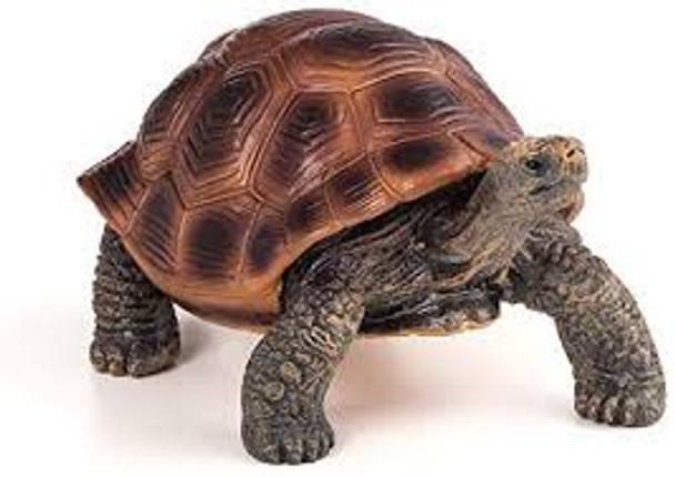 Giant Tortoise Toy Figure